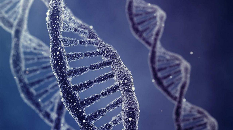 Genética e doenças: saiba como descobrir e utilizar o mapeamento genético a seu favor